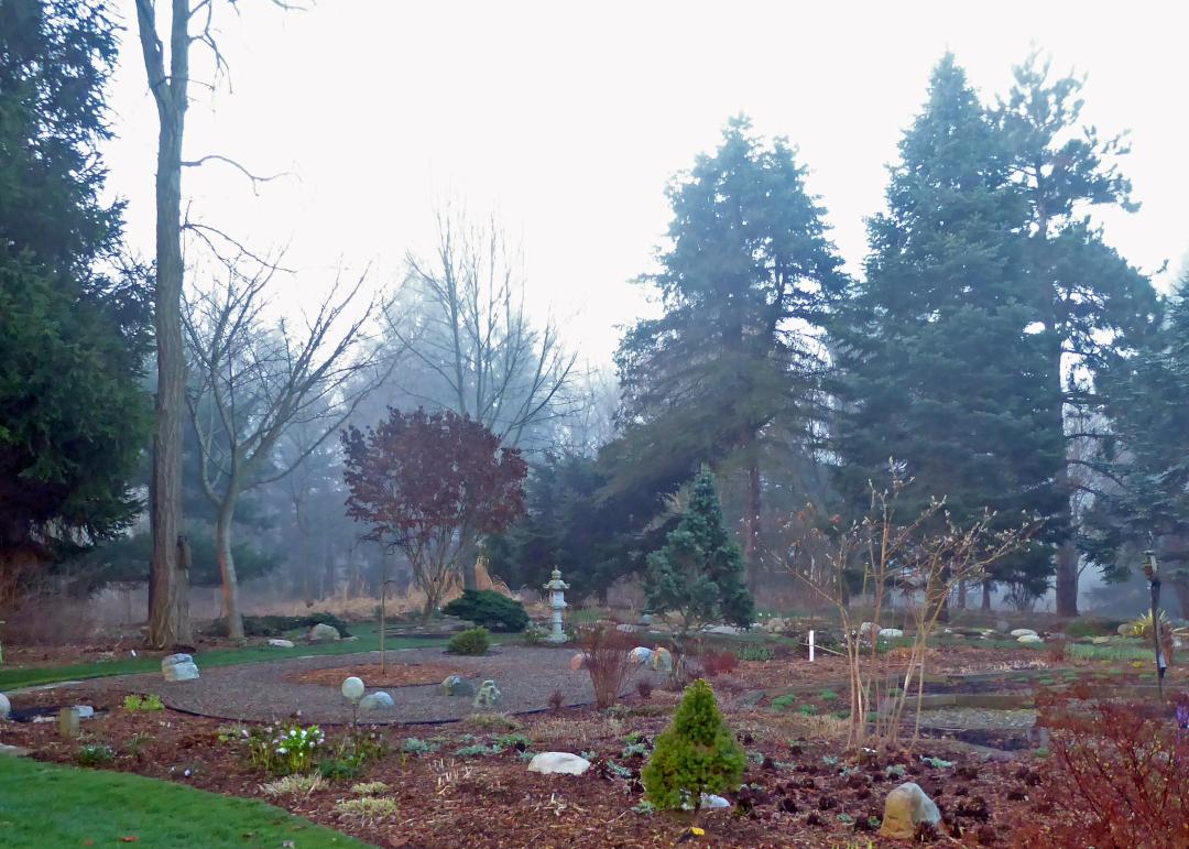 dales-garden-in-2020-finegardening