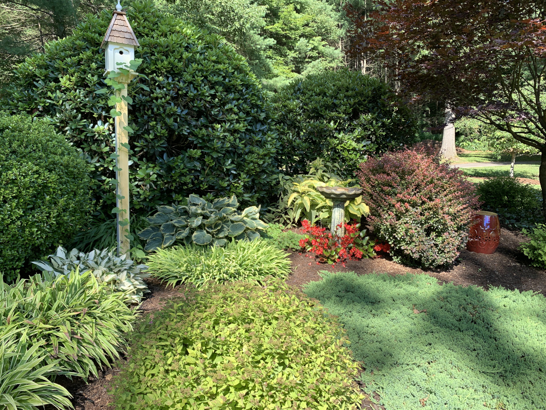 ray-and-mary-anns-massachusetts-garden