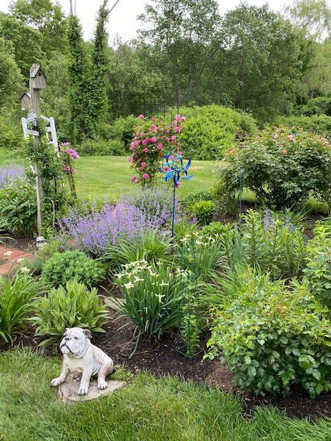 summer-in-lils-garden-finegardening