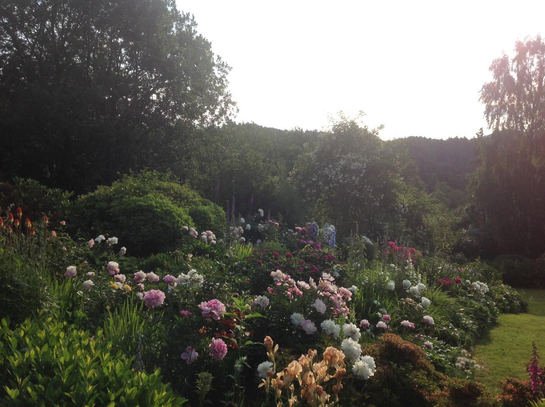 gardening-in-western-norway-finegardening