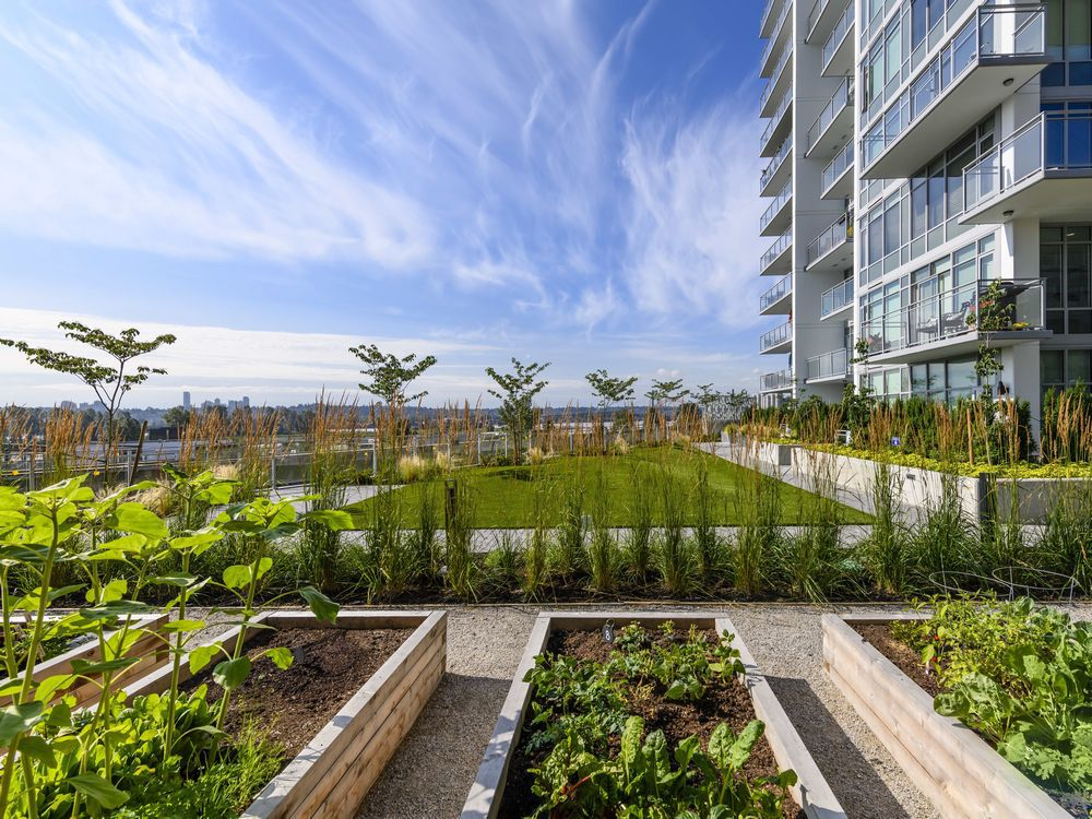 master-planned-communities-how-outdoor-spaces-enhance-livability