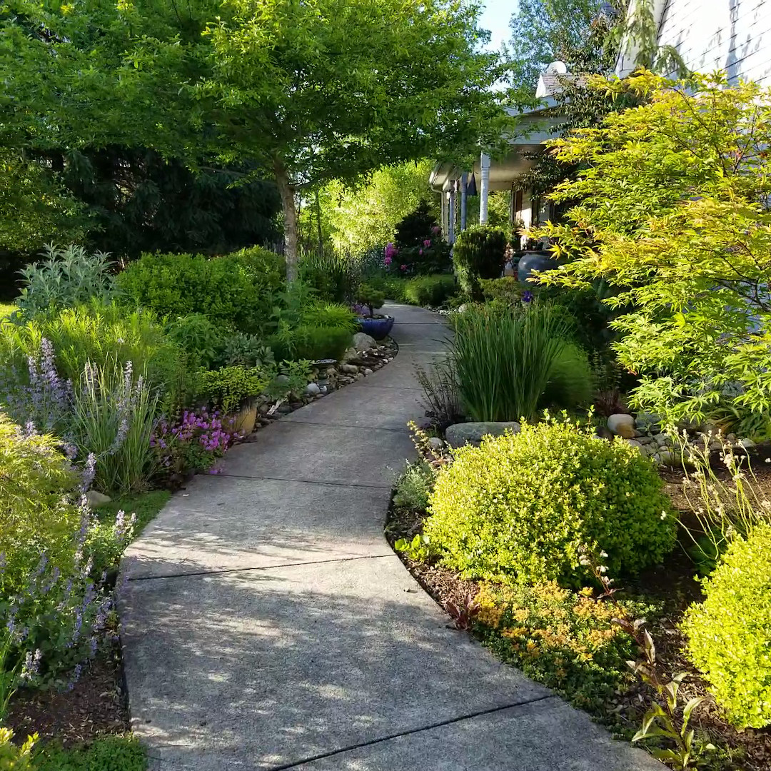 jamess-front-walk-garden-finegardening