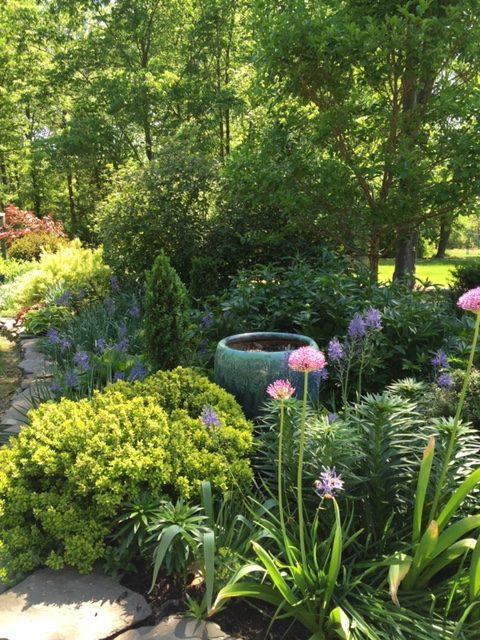 an-art-teachers-garden-finegardening
