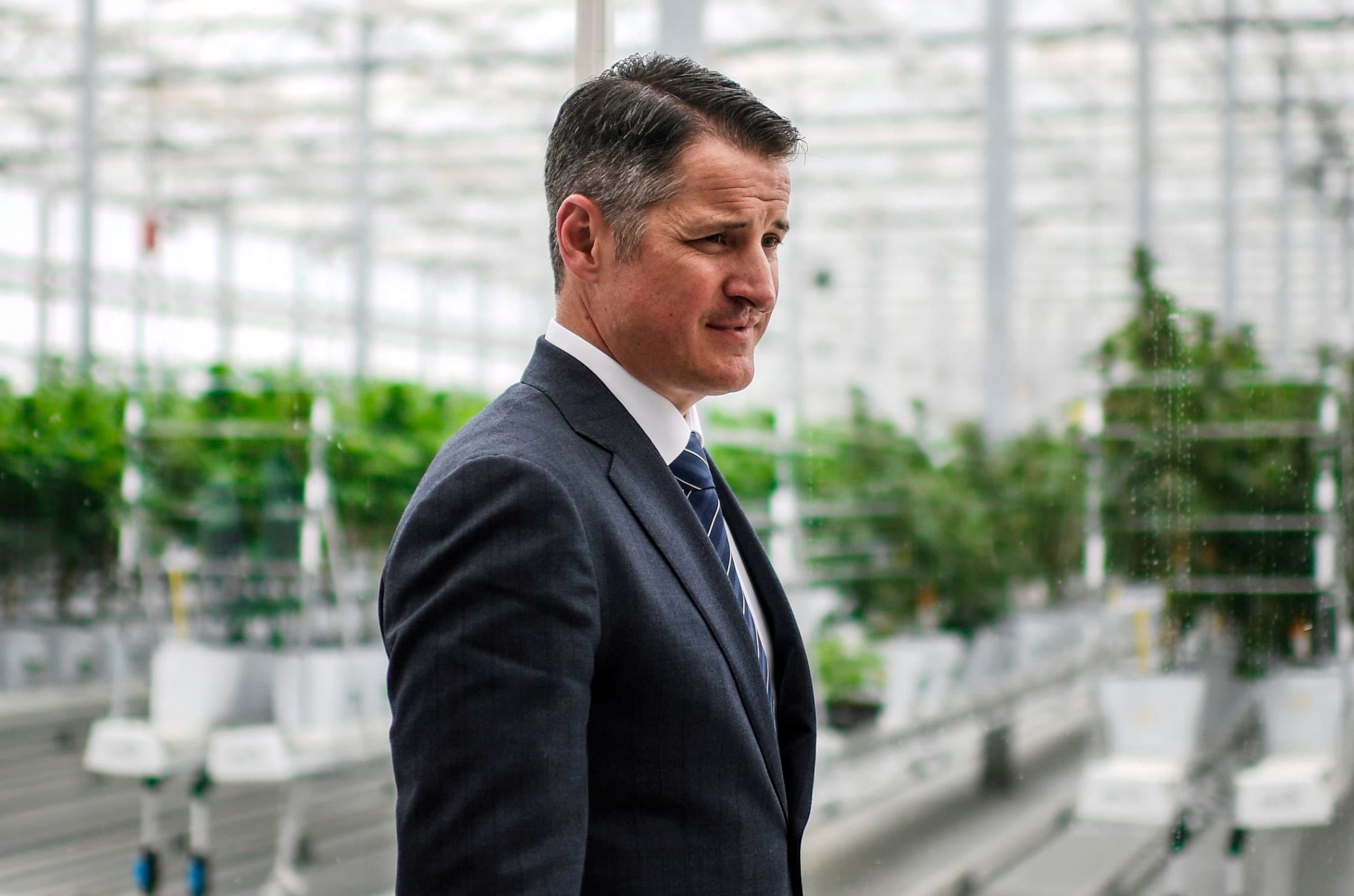 tilray-ceo-expects-u-s-federal-cannabis-legalization-within-two-years