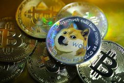 dogecoin-rallies-on-elon-musk-tweet-anticipated-coinbase-listing