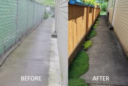 tiny-side-yard-makeover-finegardening
