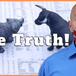 Why a Stock Market Crash Doesn't Matter | How to Invest