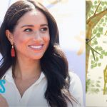 """Meghan Markle Defended Over """"The Bench"""" Plagiarism Claims 