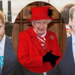 Prince William & Prince Harry's Reunion Going In Right Direction | E! News