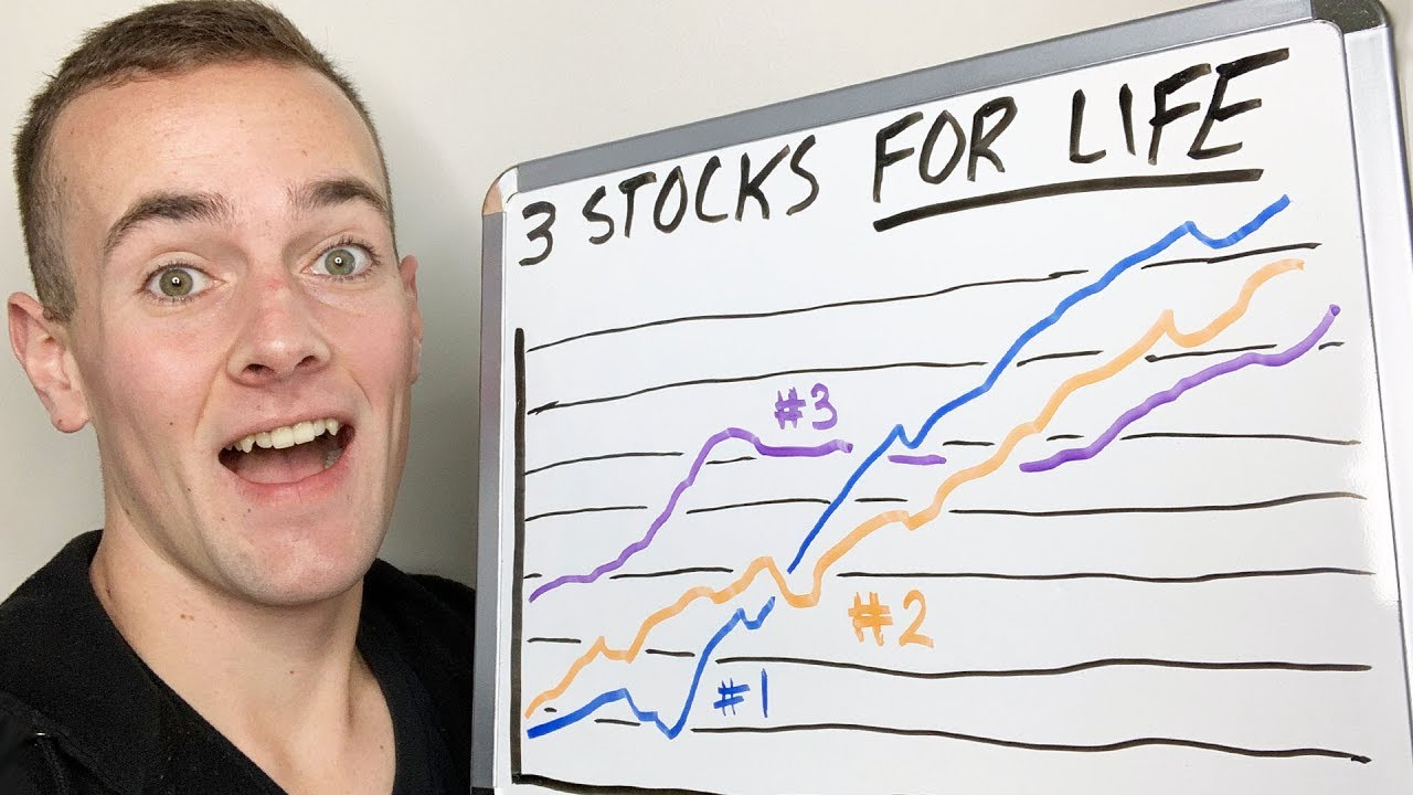 3 Stocks I Would Buy & NEVER Sell!