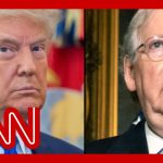 WSJ: Trump wants McConnell voted out of Senate